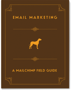 MailChimp distributes guides in mobi (Kindle), ePub (iPad, Nook) and PDF